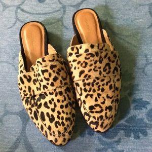 Halogen leopard calf hair mules